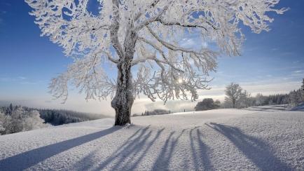 Winter in der Schweiz